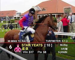 horse racing tote