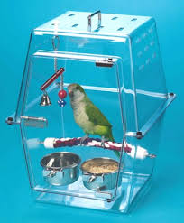 parrot home