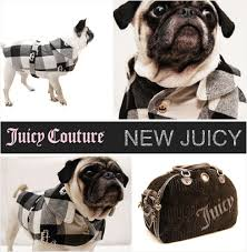 juicy couture dog jacket