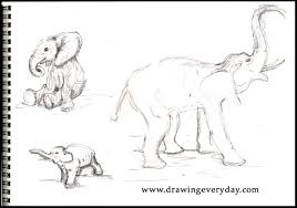 easy drawings of animals