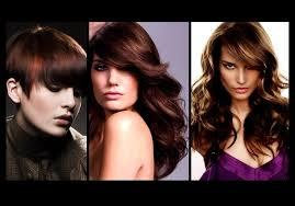 brunette hair colour ideas