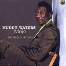 muddied waters