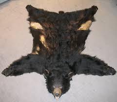 black bear skin