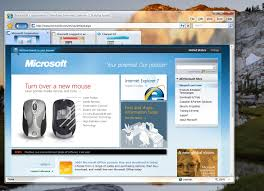 ie8 screenshots