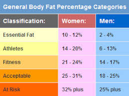body fat percent chart