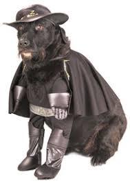 joker dog costume