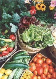 farming food