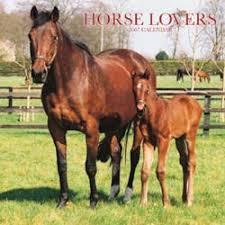 free horse graphics