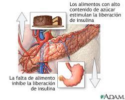 insulina en la sangre