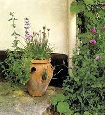 small cottage garden