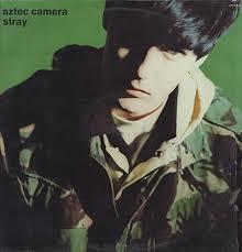 aztec camera stray
