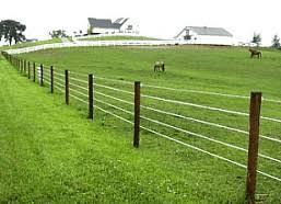 hi tensile fencing