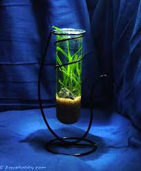 fish tank tube