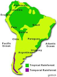 amazon rainforest weather