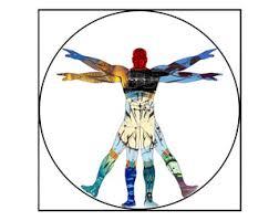 illustration human body
