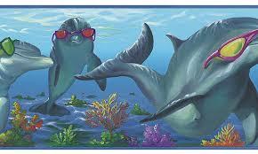 dolphin borders