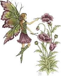 animation fairies