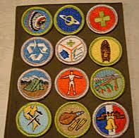 boy scout uniform sash