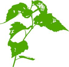 graphic leaf