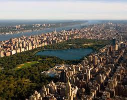 new york city fun