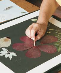 pressed flower designs