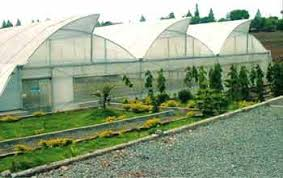 green house structure