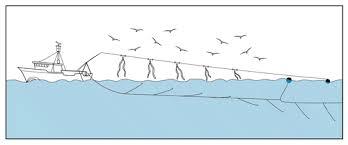 longlining fishing