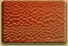 lace wood
