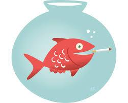 fish smoking