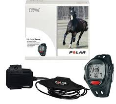 horse heart rate monitors