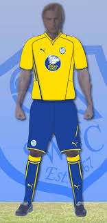 sheffield wednesday shirt