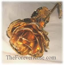 dipped rose