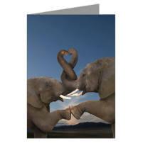 romance birthday cards