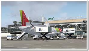 flight sim 9