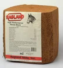 horse protein