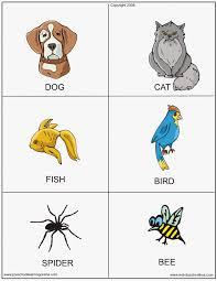 printable animal photos