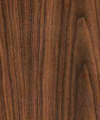 black walnut timber