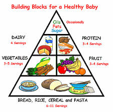 pyramid of nutrition