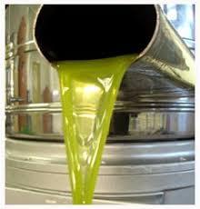 huile d olive maroc