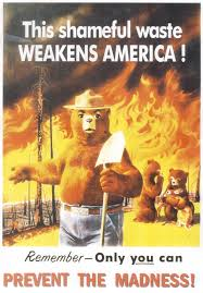 picture of smokey the bear