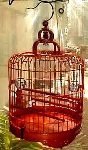 chinese bird cages