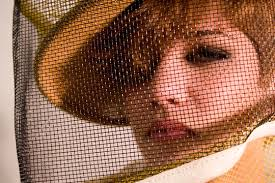 bee keepers hat