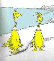 sneetches on the beaches