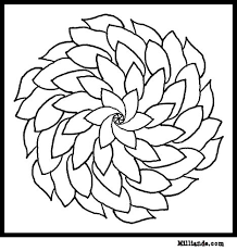 flowers coloring books