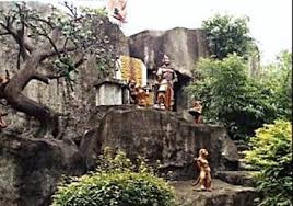 monkeys home