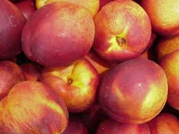 nectarine fruits