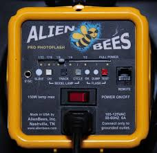 alien bees b800