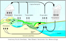 acid rain diagrams