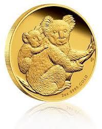 gold koala
