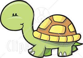 free clipart turtle